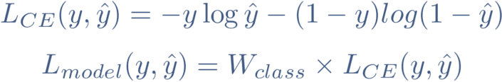 Class weighing loss function